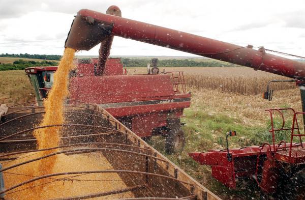 IBGE estima queda de 5,3% na safra de grãos deste ano