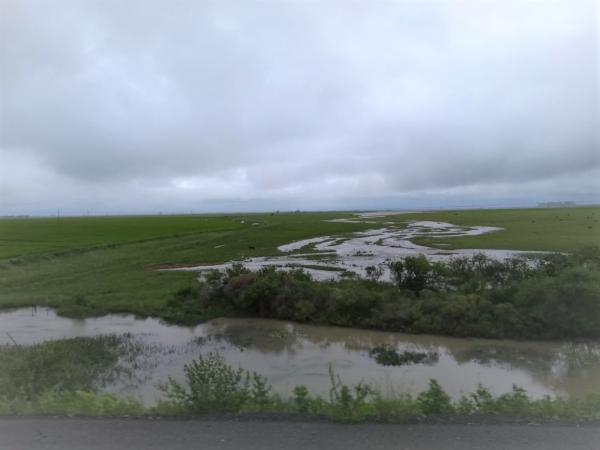 Emater-Ascar estima prejuízos de R$ 786 milhões causados pelas chuvas em plantações