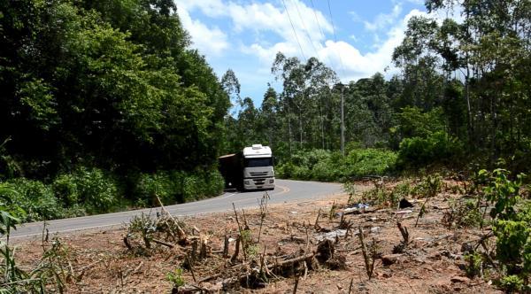 Imprudência aumenta riscos nas rodovias da Região Celeiro
