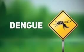 Três Passos registra duas suspeitas de Dengue autóctone