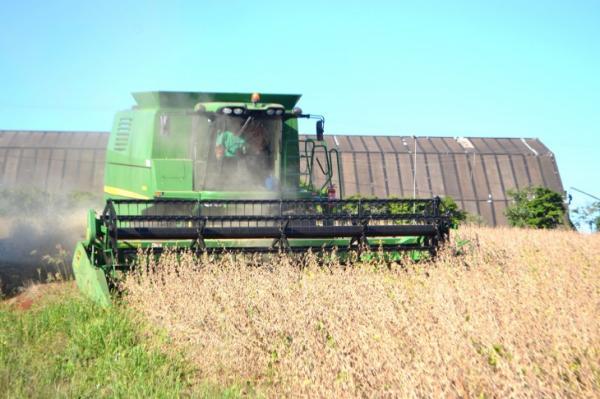 CONAB projeta produção recorde de soja no Rio Grande do Sul