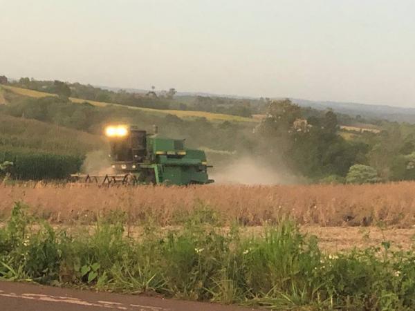 Safra de soja deverá superar a marca de 18 milhões de toneladas