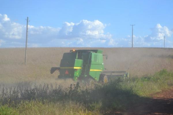 Emater: Colheita de soja está concluída na Região Celeiro