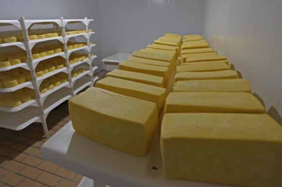 Estado ganha reforço na inspeção federal de produtos agropecuários