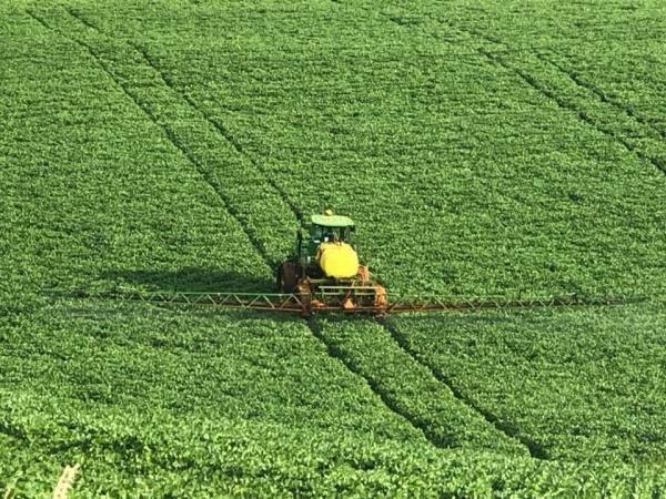 Brasil aparece na 44ª posição em ranking mundial sobre o uso de defensivos agrícolas