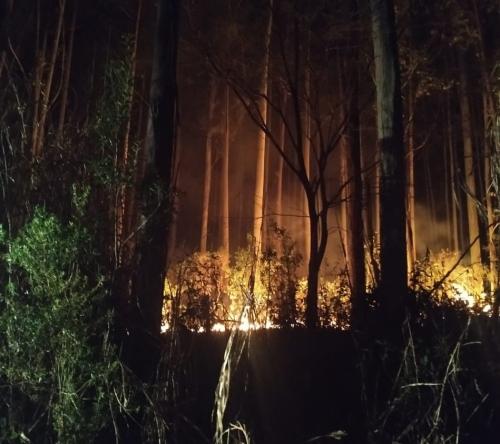 Grande incêndio é registrado no interior de Crissiumal