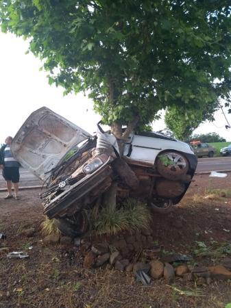 Caroneiro morre após veículo colidir em árvore em Taquaruçu do Sul