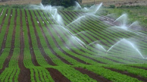 Programa de irrigação beneficiará agricultores da Região Celeiro
