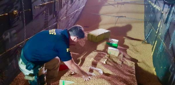 PRF apreende carga com meia tonelada de maconha