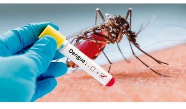 Miraguaí confirma caso de Dengue