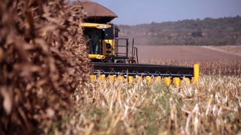 Produtores contratam quase R$ 12 bilhões no primeiro mês do plano agrícola