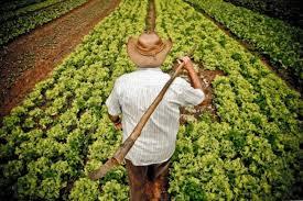 Fetag orienta agricultores a não se cadastrem no Auxílio Emergencial