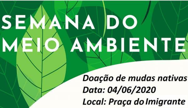 Tenente Portela: Mudas de árvores nativas serão entregues gratuitamente