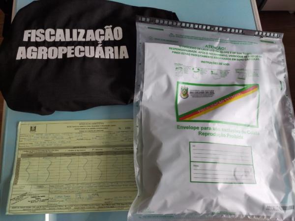RS registra os primeiros casos de recebimento de sementes não solicitadas do exterior