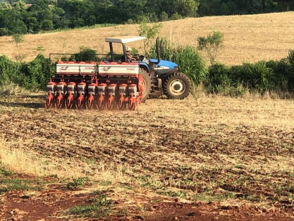 Tempo seco provoca redução na intensidade do plantio de soja no Rio Grande do Sul