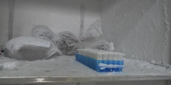 URI disponibiliza ultrafreezers para armazenar vacinas contra Covid-19 em Frederico Westphalen