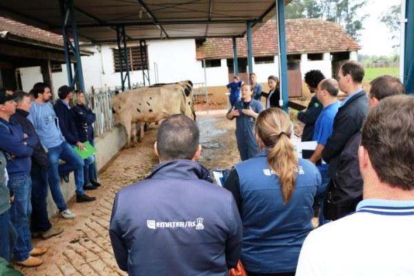 Produção de leite é tema de capacitação para extensionistas da Emater-Ascar